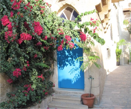 Mediterranean style turquoise front door with bougainvillea growing around it
