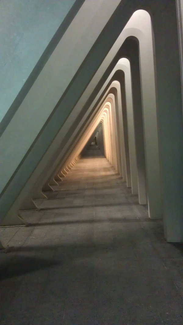 Santiago Calatrava Liege Guillemins by Mocha