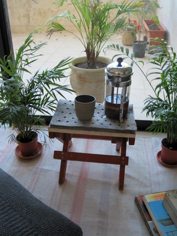 Biophilic indoor outdoor space - Mocha