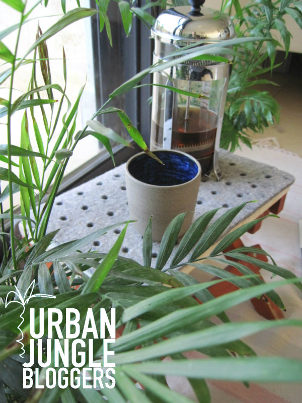 Urban Jungle Bloggers Plants and Coffee