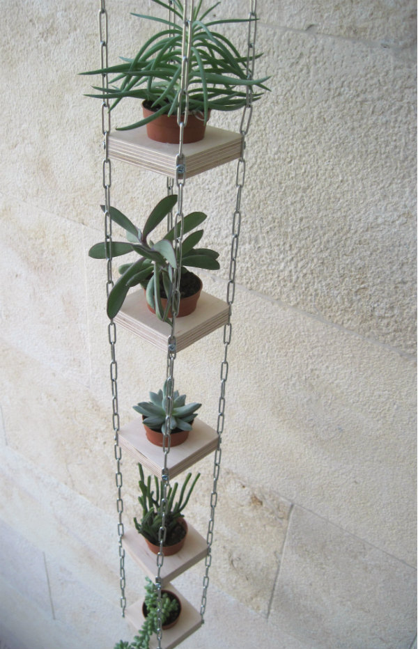 Vertical Hanging Planter for Succulents by Mocha