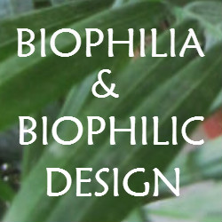 Biophilia and Biophilic Design