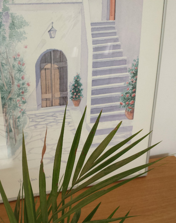 Picture of a Spanish Villa with an areca palm