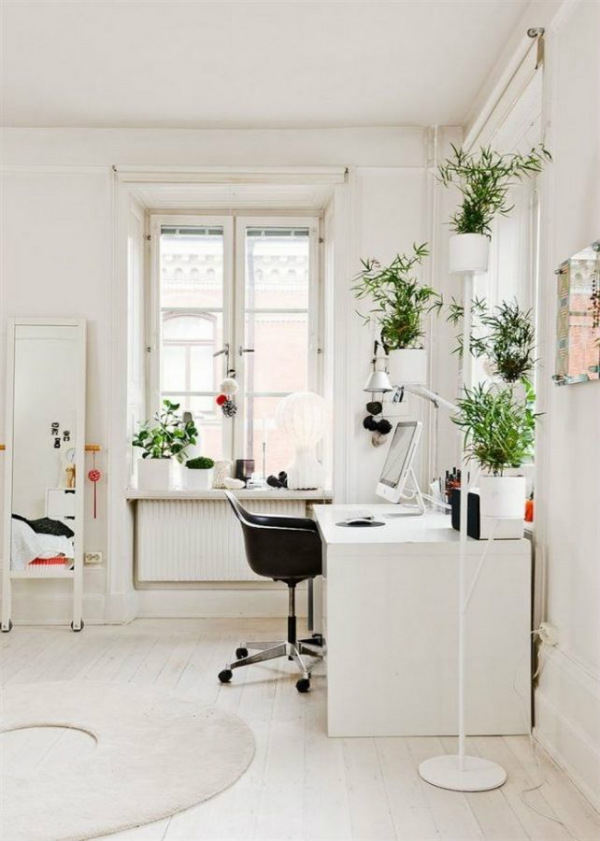 White home office with plants