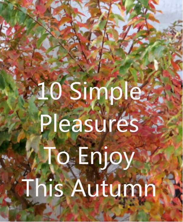 Ten simple pleasures to enjoy this autumn