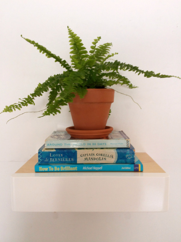 Plant and books - Mocha for Urban Jungle Bloggers
