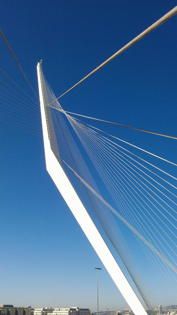 Biophilic architecture: Chord Bridge by Santiago Calatrava