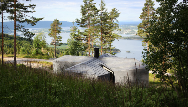 Minimalist wood cabin with biophilic design and views of nature