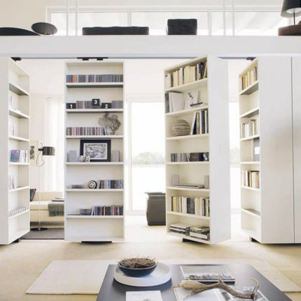 Bookshelves room dividers