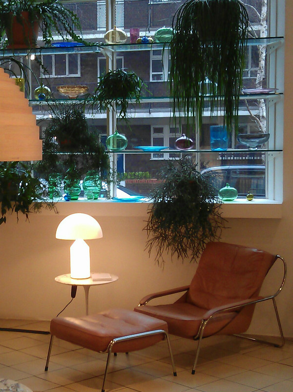 Biophilic design - plants decorating the window of a living room
