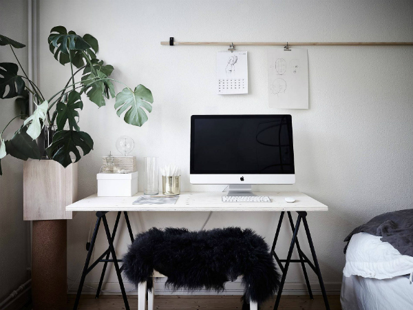 Minimalist home office in a bedroom with plant
