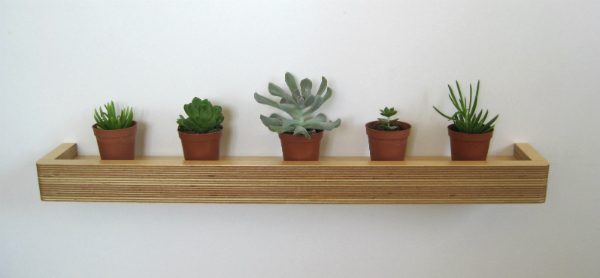 Floating shelf with succulents