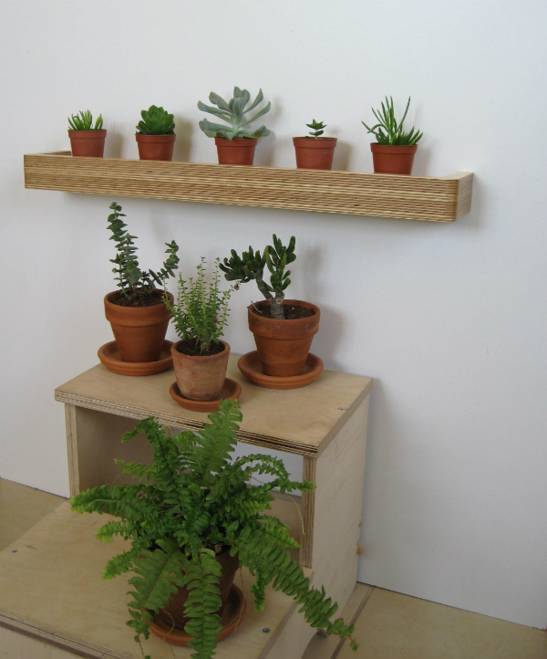Plant shelves and floating shelf with succulents