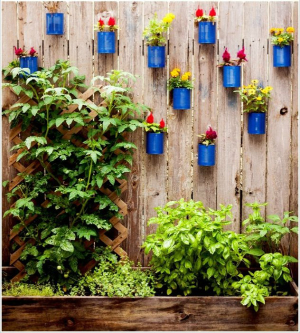 Vertical garden made from tins painted bright blue and filled with colourful plants and flowers