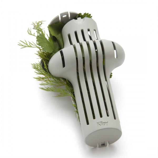 Herb Infuser from Mocha