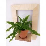 marco-frame-shelf-fern-mochacasa