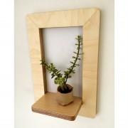 marco-frame-shelf-succulent-mochacasa