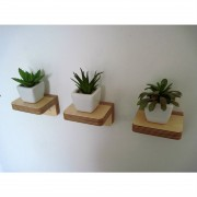 piccolo-plant-shelves-samuel-ansbacher-mochacasa