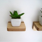 piccolo-shelf-succulents-samuel-ansbacher-mochacasa