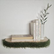 grass-floating-shelf-book-shelf-mochacasa
